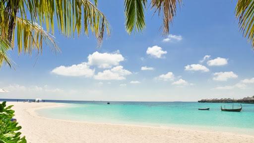 リゾート感あふれるビーチ