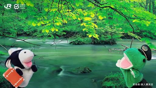 青森県奥入瀬渓谷